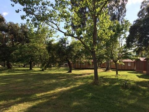 Camping L'Oso - Camping Corse du sud - Image N°5