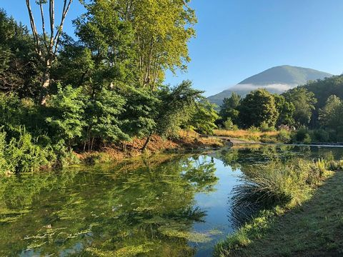 Camping La Bernede  - Camping Aude - Image N°25