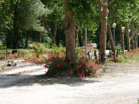 Camping Domaine de Neguenou  - Camping Lot e Garonna - Image N°6