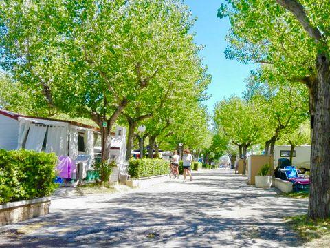 Camping International Riccione - Camping Rimini - Image N°10