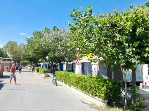 Camping International Riccione - Camping Rimini - Image N°9