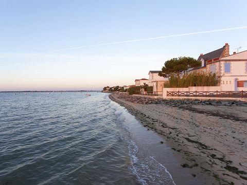 Village Vacances Sous les Pins - Camping Charente-Maritime - Image N°4