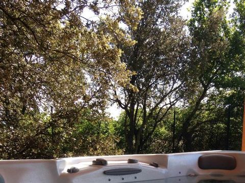 Camping Lodges en Provence - Camping Vaucluse - Image N°12