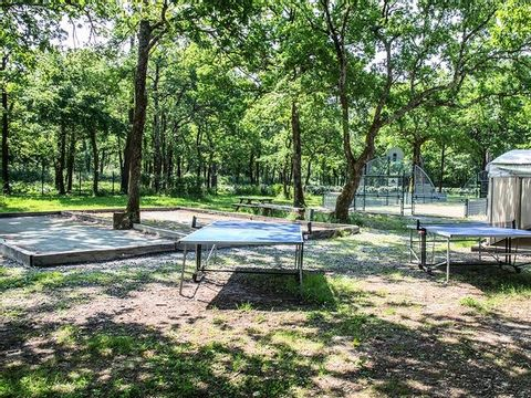 Camping Les Chèvrefeuilles  - Camping Charente-Maritime - Image N°19
