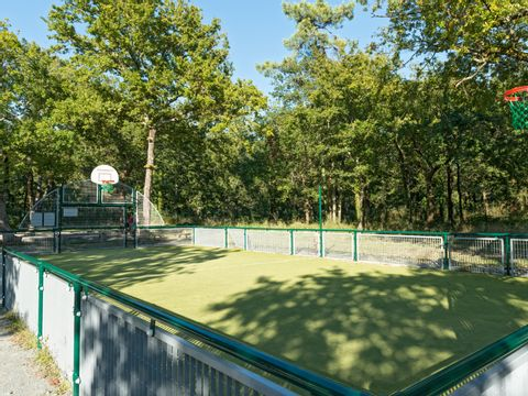 Camping Les Chèvrefeuilles  - Camping Charente-Maritime - Image N°7