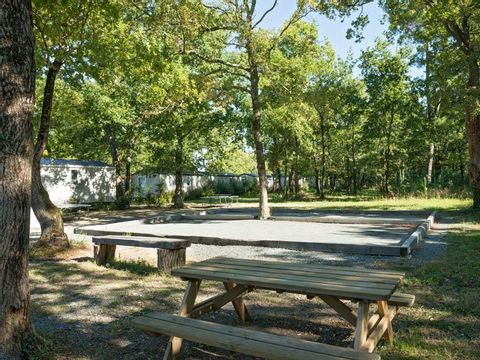 Camping Les Chèvrefeuilles  - Camping Charente-Maritime - Image N°21