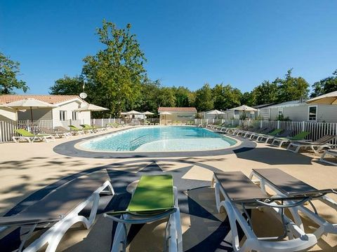 Camping Les Chèvrefeuilles  - Camping Charente-Maritime - Image N°4