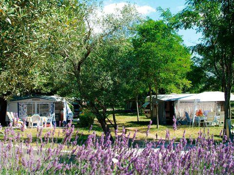 Ardèche  Le Petit Bois - Camping Sites et Paysages - Camping Ardèche - Afbeelding N°10