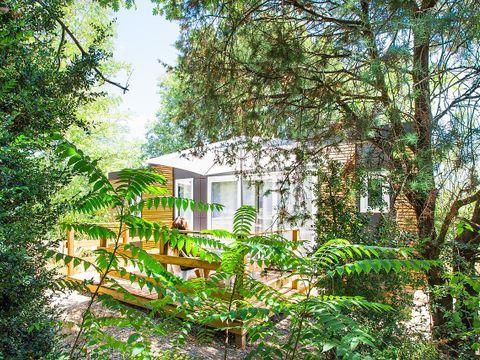 Le Petit Bois - Camping Sites et Paysages - Camping Ardeche - Image N°10