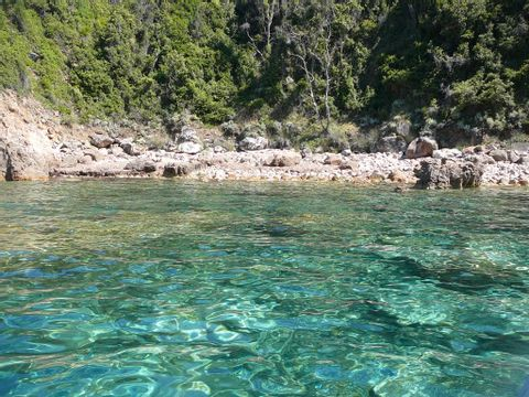 Camping Le Sagone - Camping Corse du sud - Image N°20