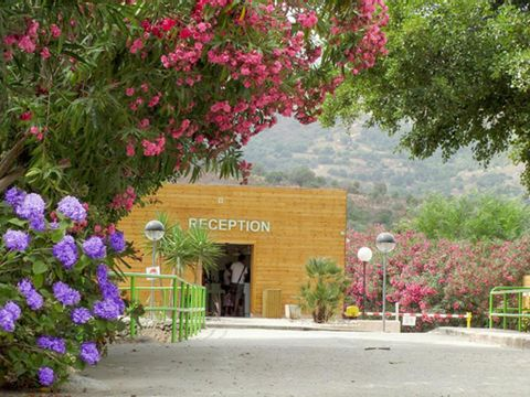 Camping Le Sagone - Camping Corse du sud - Image N°11