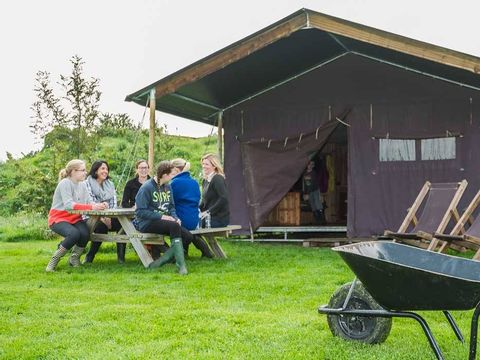 La ferme des Champeaux  - Camping Haute-Vienne - Image N°9