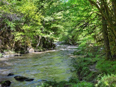 La Rivière Fleurie - Camping Sites et Paysages - Camping Dordogne - Image N°16