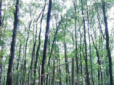 Camping Naturiste Héliomonde - Camping Essonne - Image N°12