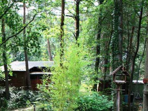Camping Naturiste Héliomonde - Camping Essonne - Image N°11