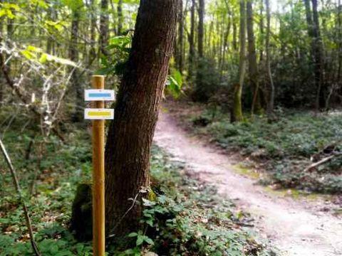 Camping Naturiste Héliomonde - Camping Essonne - Image N°9