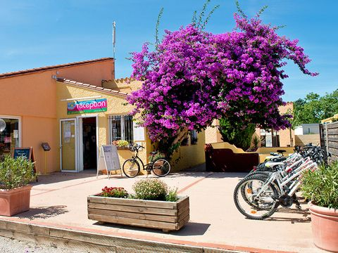 Camping  Le Roussillon  - Camping Pyrenees-Orientales - Image N°20