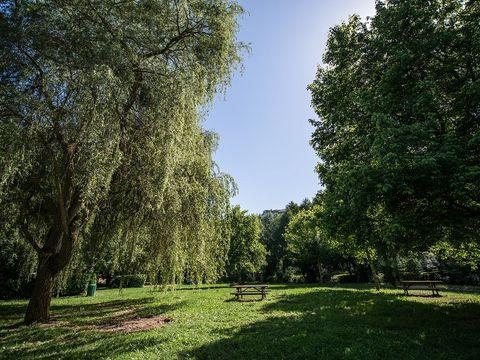 Camping de la Muse - Camping Aveyron - Image N°4