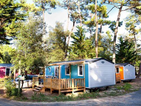 Camping Signol - Camping Charente-Maritime - Image N°27