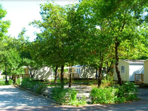 Camping La Maurie - Camping Charente-Maritime - Image N°19