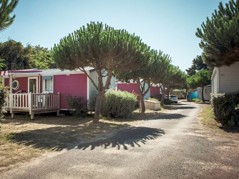 Camping Le Suroit - Camping Charente-Maritime - Image N°25