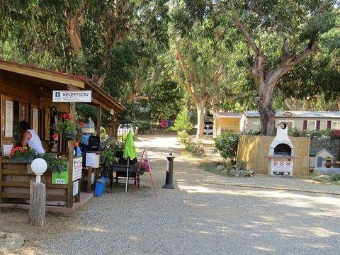 Camping U pezzo - Camping Corse - Image N°9