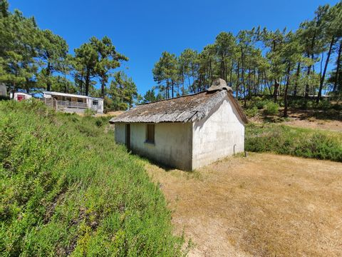 Camping Le Domaine des Pins   - Camping Vendée - Image N°11