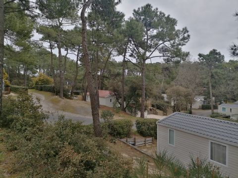 Camping Le Domaine des Pins   - Camping Vendée - Image N°16