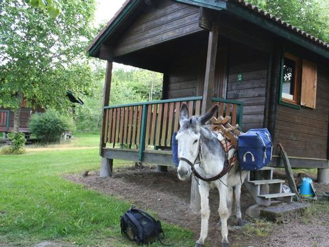 Camping Le Saint Eloy - Camping Puy-de-Dome - Image N°10