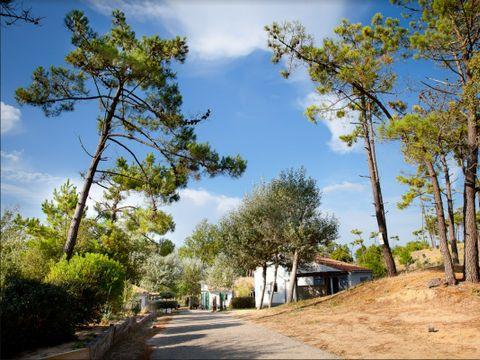 Village Vacances Le Petit Bec - Camping Vendée - Image N°5