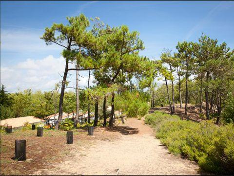 Village Vacances Le Petit Bec - Camping Vendée - Image N°18