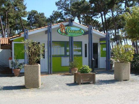 Camping La Plage de Riez   - Camping Vendée - Image N°10