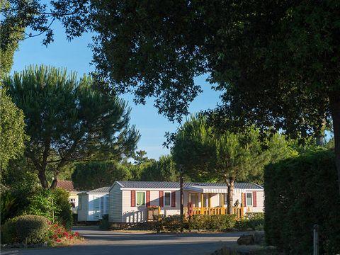Camping Siblu Le Bois Dormant - Funpass inclus - Camping Vendée - Image N°12
