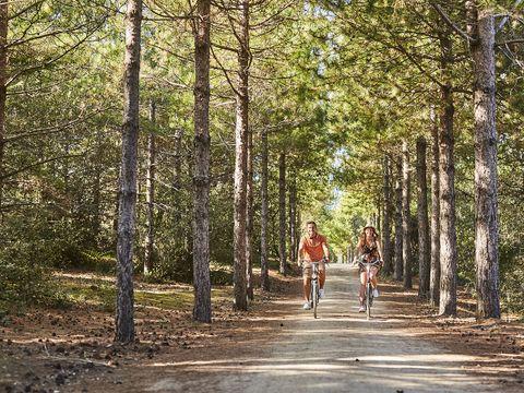 Camping Siblu Le Bois Masson - Funpass inclus - Camping Vendée - Image N°31