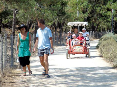 Camping Le Clarys Plage - Camping Vendée - Image N°25