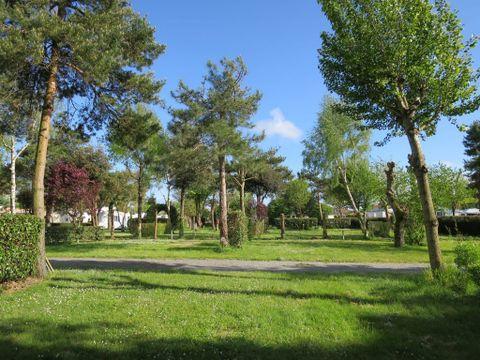 Camping Le Both d'Orouet - Camping Vendée - Image N°11