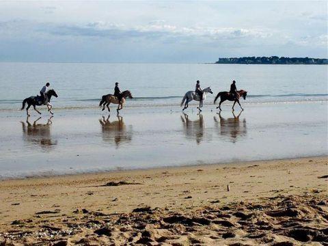 Atlantic 2000 sur Camping Acapulco  - Camping Vendée - Image N°42