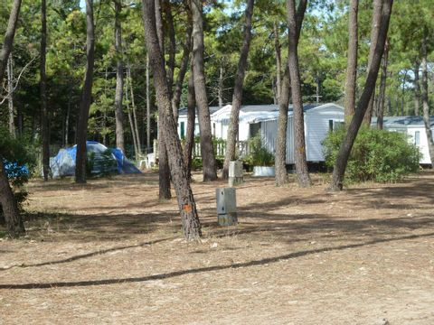 Camping Les Samaras - Camping Vendée - Image N°18