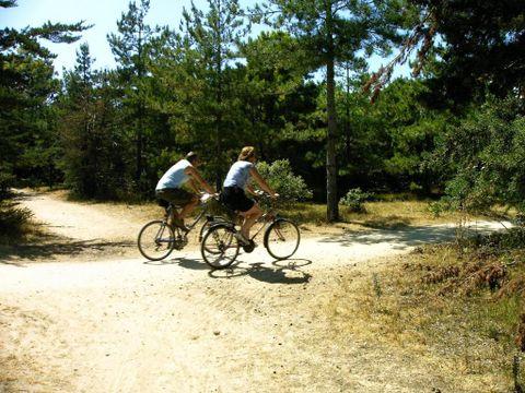 Camping la Forêt - Camping Vendée - Image N°11