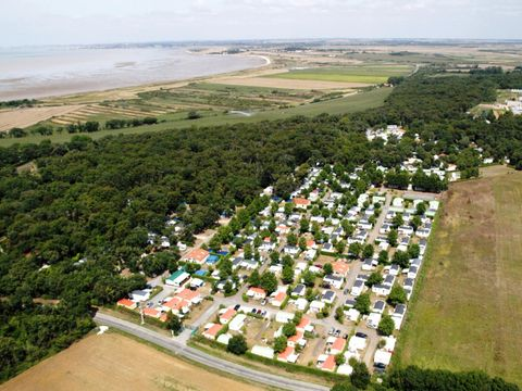 Camping Domaine Les Charmilles - Camping Paradis  - Camping Charente-Maritime - Image N°15