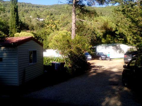 Camping l'Orée des Cévennes - Camping Gard - Image N°3