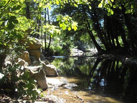 Camping l'Orée des Cévennes - Camping Gard - Image N°10