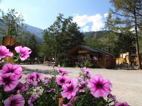 Camping l'Iscle de Prelles - Camping Hautes-Alpes - Image N°5