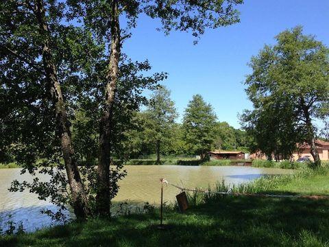Camping Domaine de Mépillat - Camping Ain - Image N°6