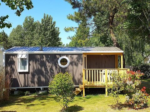Camping Les Pins d'Oléron - Camping Paradis - Camping Charente-Maritime - Image N°25