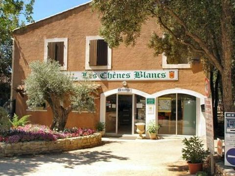 Camping Domaine des Chenes Blancs - Camping Vaucluse - Image N°13