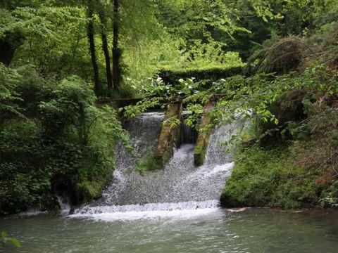 Camping Les Rives de l'Adour - Camping Paradis  - Camping Landes - Image N°21