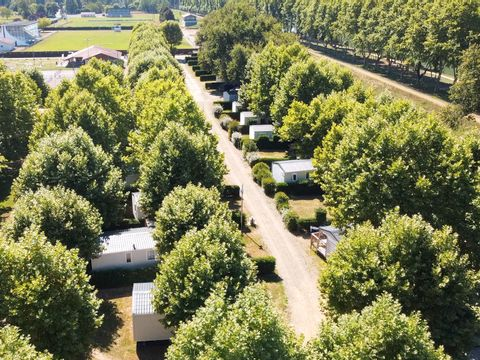 Camping Les Rives de l'Adour - Camping Paradis  - Camping Landes - Image N°19