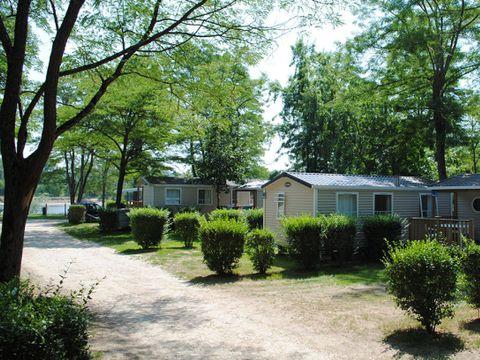 Flower Camping Les Portes de Sancerre - Camping Cher - Image N°7