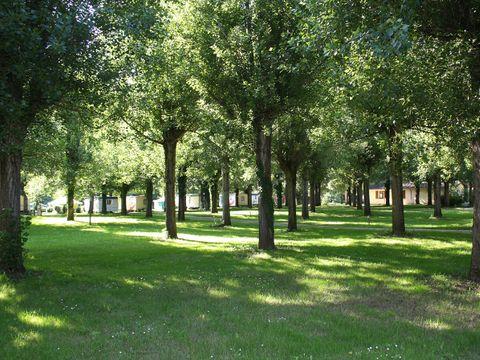 Camping Les Borgnes  - Camping Lot - Image N°12